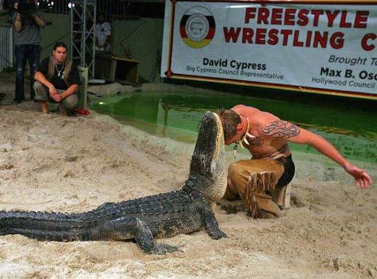 Игры с крокодилом