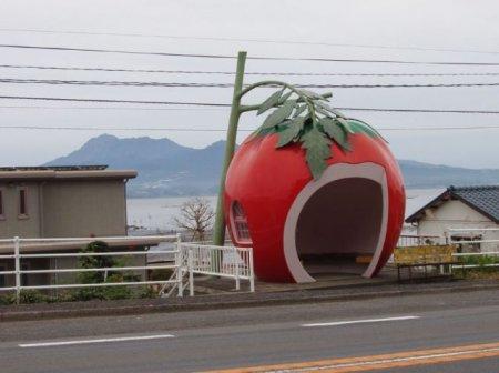 Только в Японии