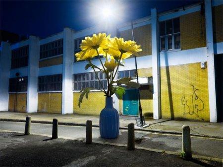 Креативные фото Holger Pooten