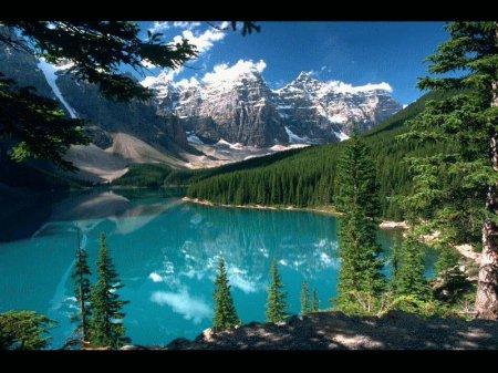 Природа во всей красе