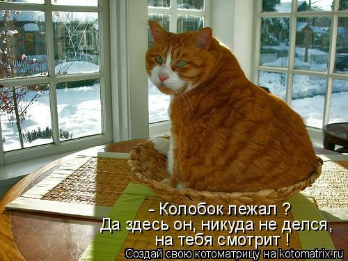 Котоматрицы-27