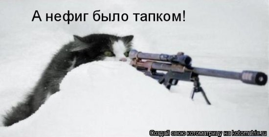 Котоматрицы-25