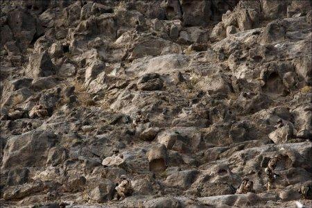 Путешествие в долину Коренгал с Марко ди Лауро