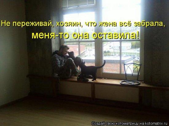 Котоматрицы-29