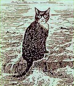 Непотопляемый кот Оскар