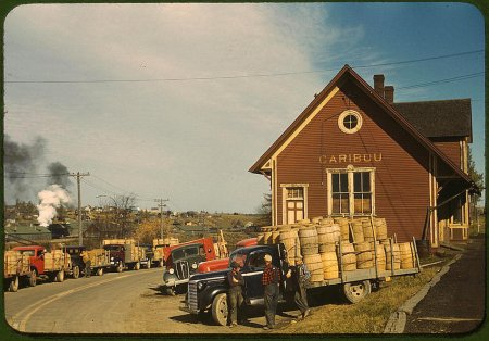 Captured: America in Color from 1939-1943