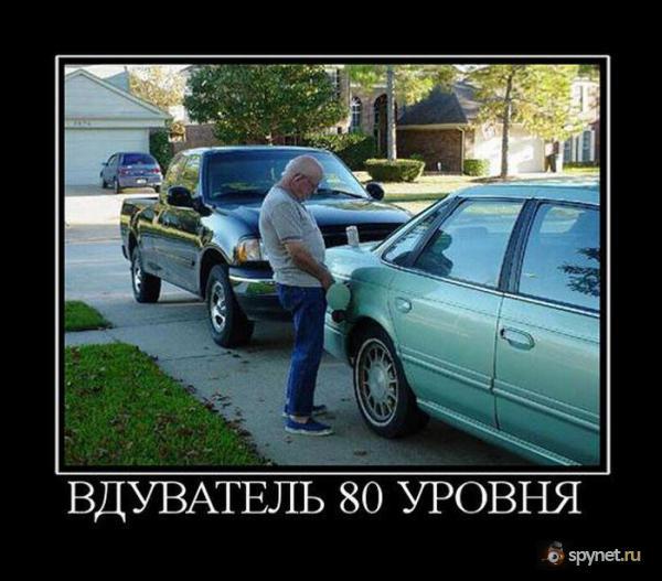 ������������ - 80