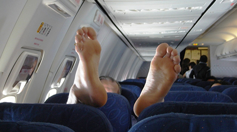 Американская авиакомпания предлагает клиентам бесплатные билеты за хорошее поведение