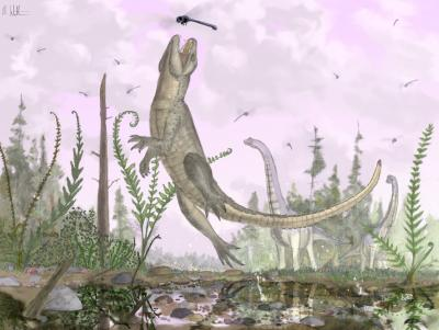 В Африке нашли древнего крокодила