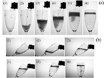Необходимость охлаждать шампанское доказали научно