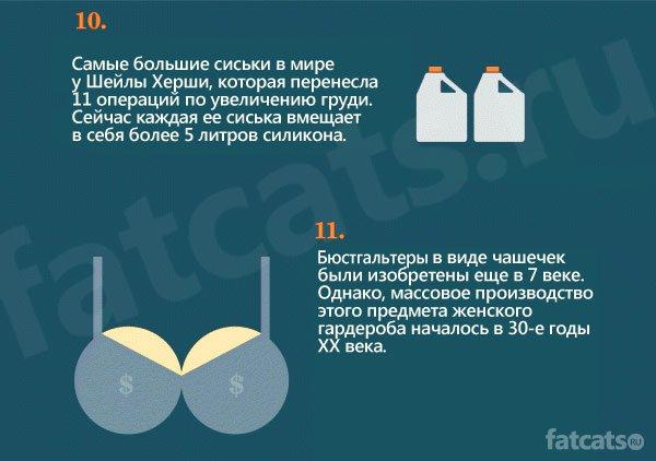 15 фактов о сиськах!