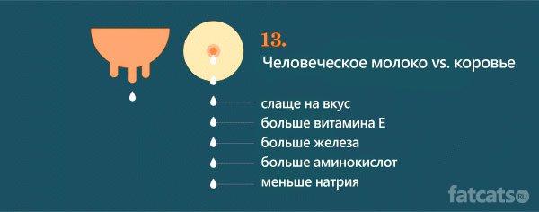 15 ������ � �������!