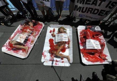 Кровавый протест PETA