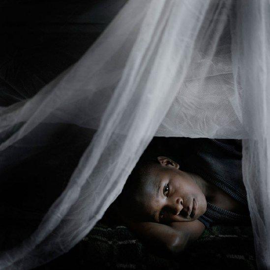 Лица малярии