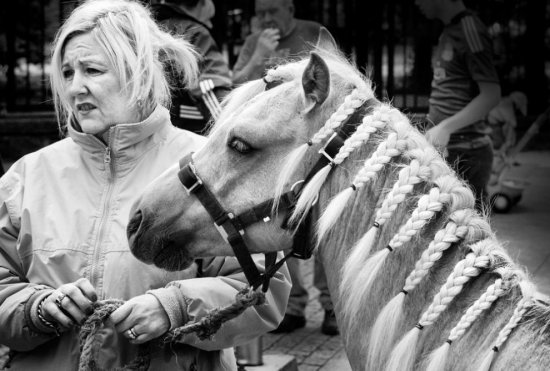 Дублин: лошади в городе