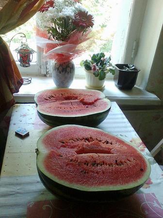 Интересно знать: Самая большая ягода