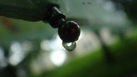 Photos by Katia
