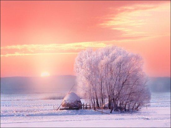 Немного зимней красоты