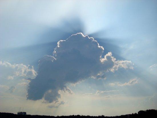 Красота ушедшего лета. Photo by [Pasha-Joint]