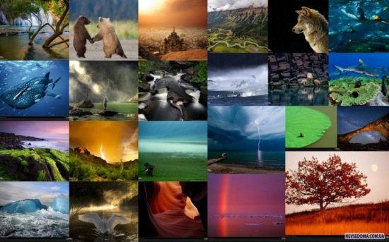 ������ ���� 2009 �� National Geographic