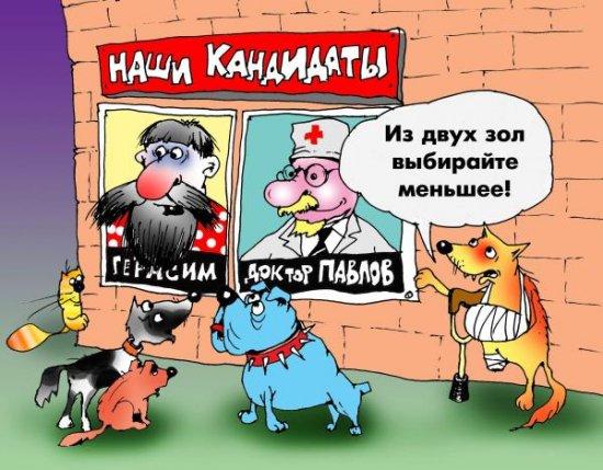 Белорусы перед выборами высказываются за нового человека
