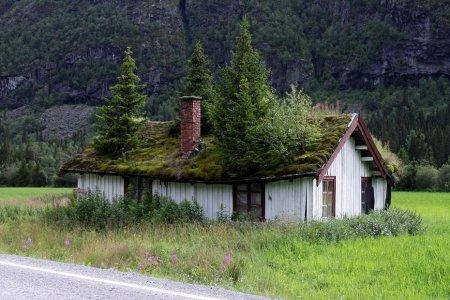 Норвежские крыши