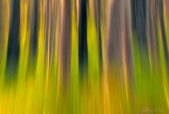 Фотограф Drew Hopper