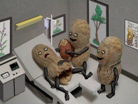 Как появился арахис