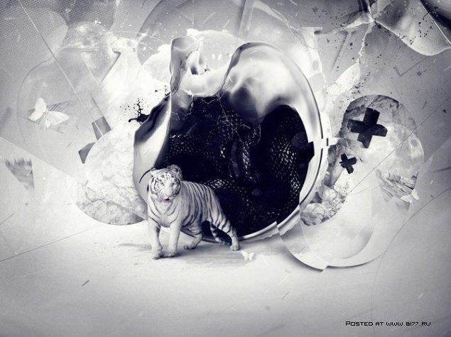 Творения графического дизайнера Soemone (Pierre Doucin)