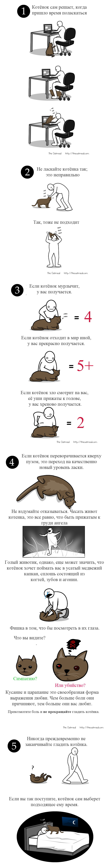 Как ласкать котёнка
