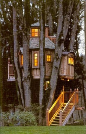 Домики на деревьях