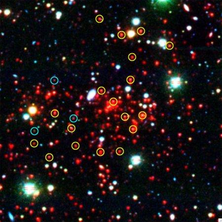 В удаленном скоплении галактик «живут» 800 триллионов Солнц