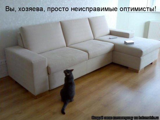 Котоматрицы-39