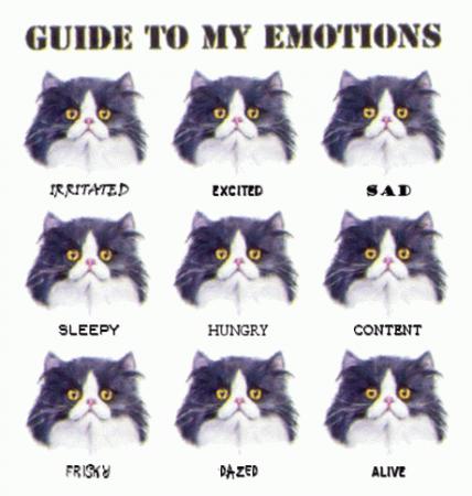Карты эмоций