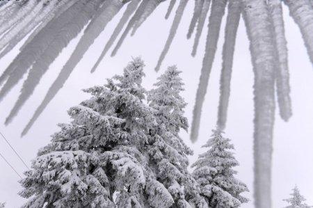 Наконец-то зима!