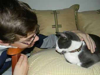 Кот воссоединился с хозяевами после пяти лет бродяжничества