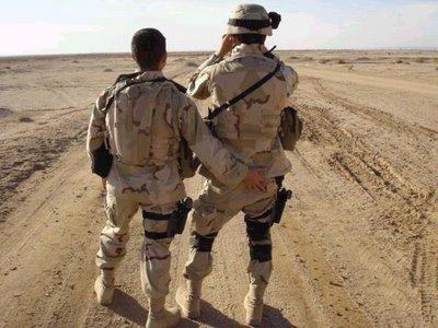 Пентагон готов к отмене ограничений на службу гомосексуалистов