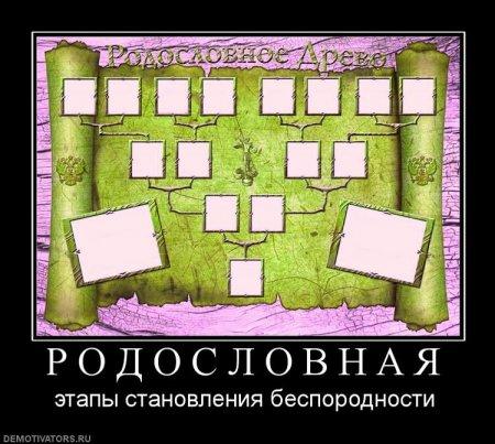 Демотиваторы - 106