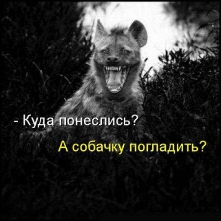 Если хочешь...
