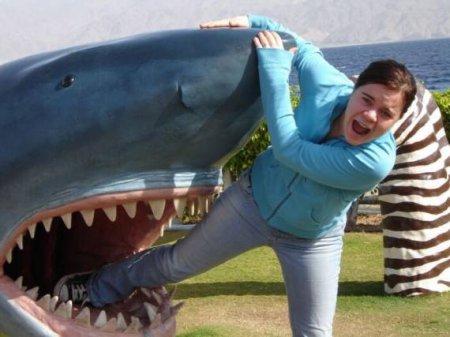 Что делать если на Минском море напала акула?