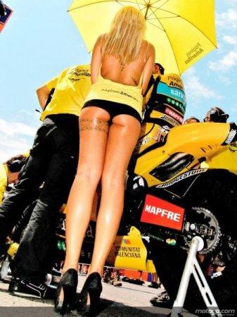 Девушки на гонках