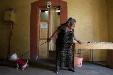 Дом пенсионеров для проституток