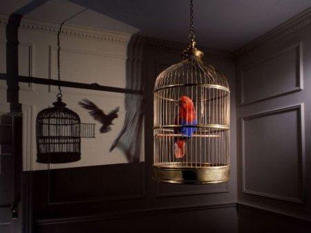 Работы талантливого нью-йоркского рекламного фотографа Стива Бронштейна