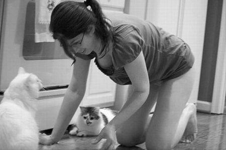 Животные любят декольте