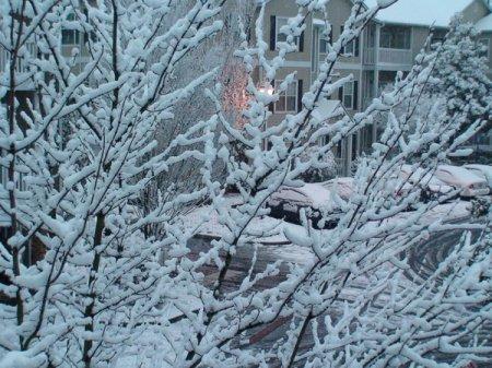 Замерз на балконе