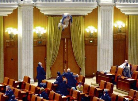 Свалился на депутатские головы (видео)