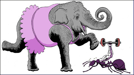 Почему слоны не танцуют, или разобьется ли хомячок?