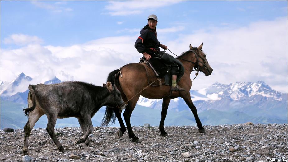 Аксакалы, горы, беркуты