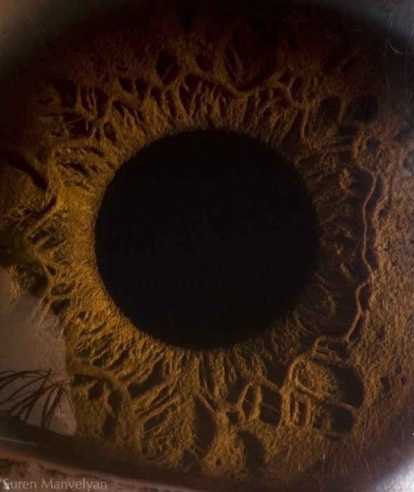Макрофотографии глаза от Сурена Манвеляна