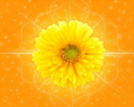 Кругом желтуха